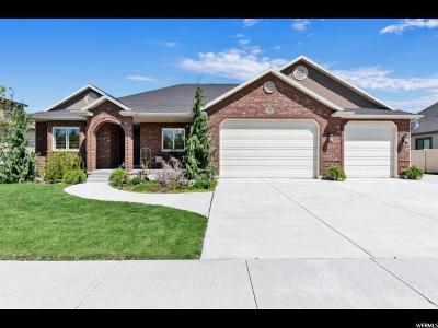 South Jordan Single Family Home For Sale: 10487 S Alexander Park Ln