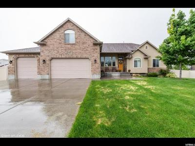 Tooele County Single Family Home For Sale: 5351 N Ponderosa Ln W