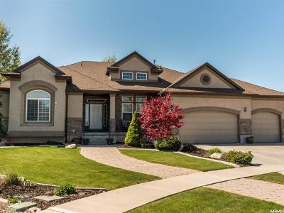 Layton Single Family Home For Sale: 3487 W 900 N
