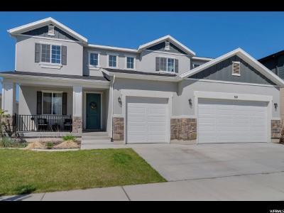 Vineyard Single Family Home For Sale: 521 N 100 E