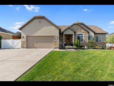 American Fork Single Family Home For Sale: 985 E 350 Cir N