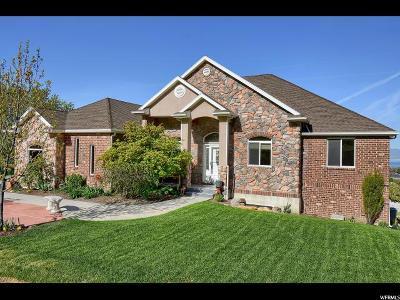 Willard Single Family Home For Sale: 345 S 200 E