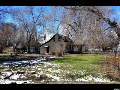 American Fork Single Family Home For Sale: 161 W Pacific Dr