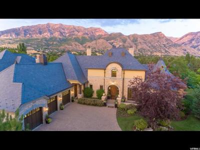 Provo Single Family Home For Sale: 4260 N Stone Creek Ln