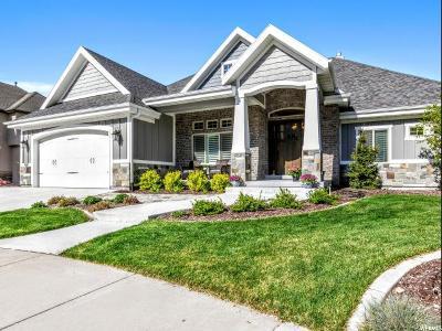 Provo Single Family Home Backup: 4587 N 475 E