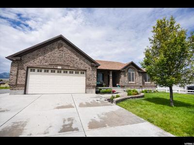 Grantsville Single Family Home For Sale: 419 N 600 W