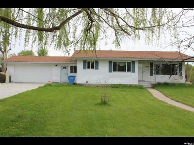 Smithfield Single Family Home For Sale: 248 E Center St