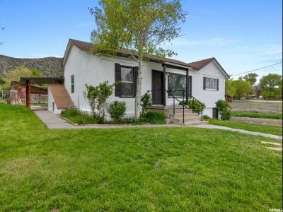 Cedar Fort Single Family Home For Sale: 75 S Church St