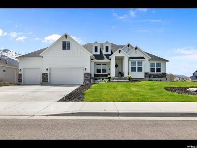 Mapleton Single Family Home Backup: 1035 W 800 S