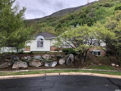 North Ogden Single Family Home Under Contract: 2516 N 1600 E
