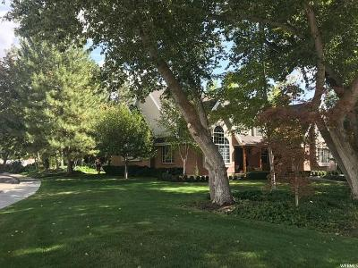 Provo Single Family Home Under Contract: 447 W 4150 N