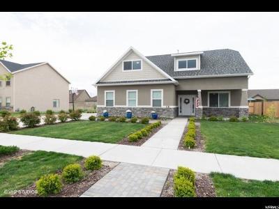 Springville Single Family Home For Sale: 35 N 450 W