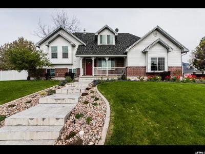 Smithfield Single Family Home For Sale: 382 S 700 E