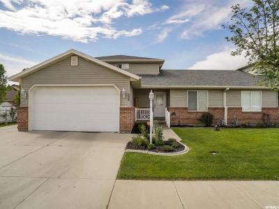 Kaysville Single Family Home Backup: 633 Teresa St