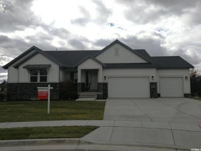 Kaysville Single Family Home For Sale: 1985 W 75 S