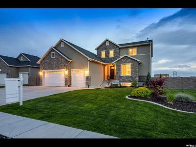 Kaysville Single Family Home For Sale: 1364 S Thoroughbred Cir