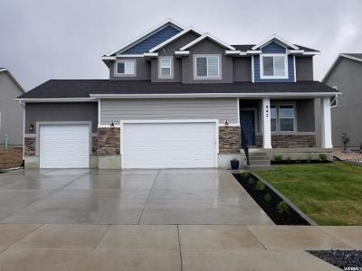 Smithfield Single Family Home For Sale: 542 S 1080 E
