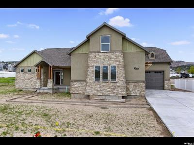 Herriman Single Family Home For Sale: 13894 S 7300 W