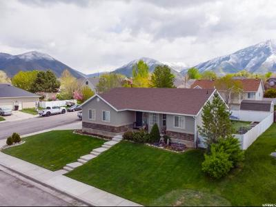Springville Single Family Home For Sale: 2467 S Eldorado Dr E