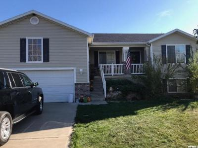 Syracuse Single Family Home For Sale: 3903 W 700 S