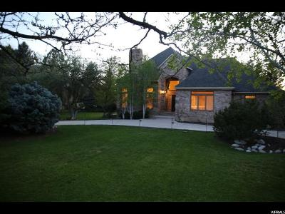 Provo Single Family Home For Sale: 4125 N Canyon Rd