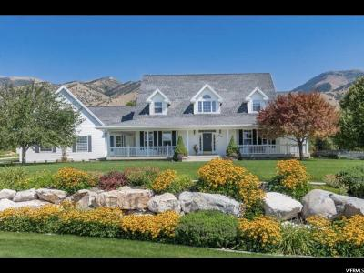 Providence Single Family Home For Sale: 730 S 300 E