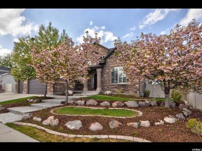 Riverton Single Family Home Under Contract: 2964 W Iris Meadow Dr