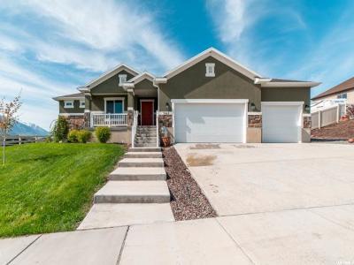 Santaquin Single Family Home Backup: 562 Sunset Dr