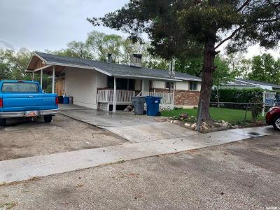 American Fork Single Family Home For Sale: 351 N 400 E