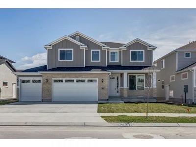 Vineyard Single Family Home Under Contract: 41 Serrata Ln S #6210