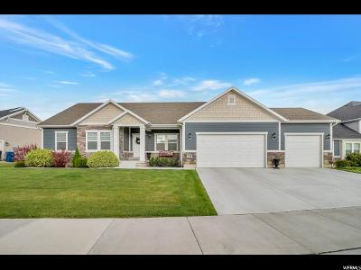 Vineyard Single Family Home For Sale: 741 S Lake View Dr