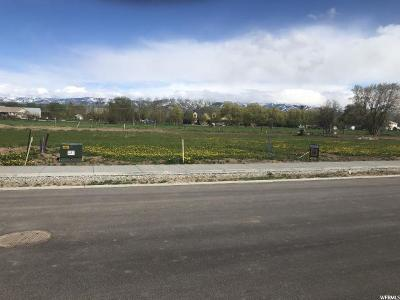 Preston Residential Lots & Land For Sale: 116 N 400 E