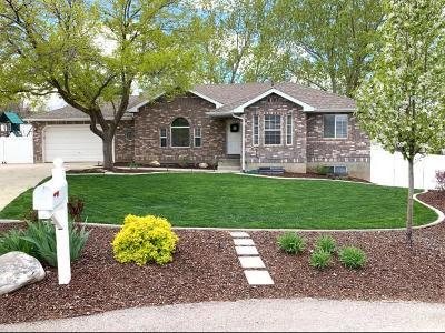 Elk Ridge Single Family Home For Sale: 344 E Ocampo Ln