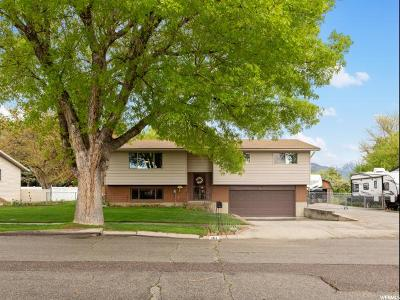 American Fork Single Family Home Under Contract: 484 N 800 E