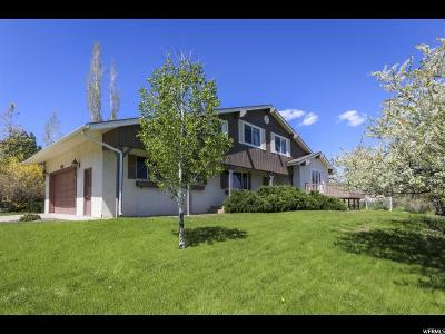 Midway Single Family Home Under Contract: 1180 N Pine Canyon Rd W