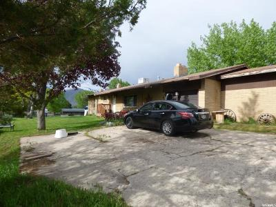 Mapleton Single Family Home For Sale: 1420 W 2600 S