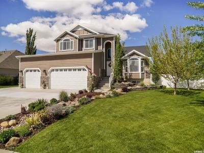 Layton Single Family Home Under Contract: 481 N 3475 W