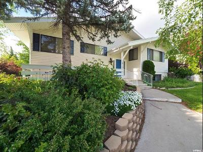 Provo Single Family Home For Sale: 1013 E 2570 N