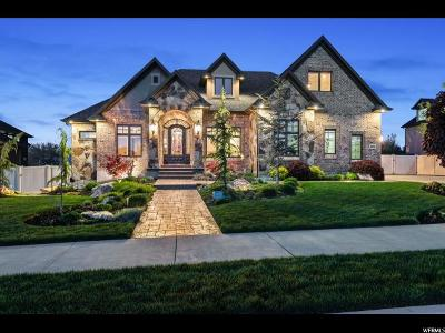 South Jordan Single Family Home Under Contract: 10575 S Alexander Park Ln W