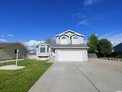 South Jordan Single Family Home Backup: 10173 S Menteith St