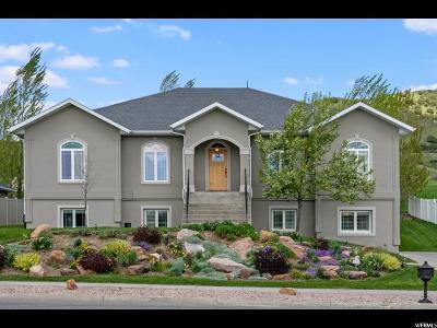 Smithfield Single Family Home For Sale: 122 N Hillside Dr E