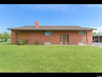 Spanish Fork Single Family Home For Sale: 315 E 8800 S