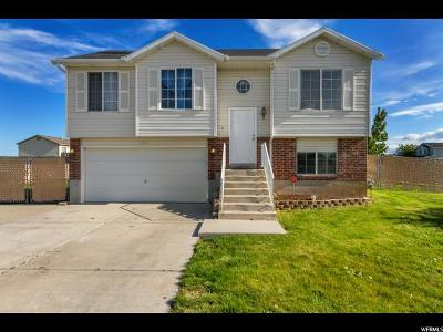 Syracuse Single Family Home For Sale: 2964 W 2300 S