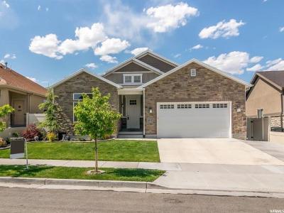 South Jordan Single Family Home For Sale: 4108 W Shady Plum Way S