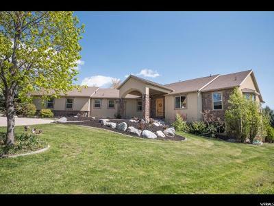 Richmond Single Family Home For Sale: 144 E 825 S