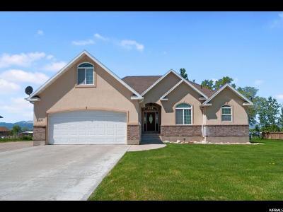 Millville Single Family Home For Sale: 555 N 140 E