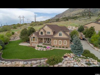 Willard Single Family Home For Sale: 400 W 7425 S