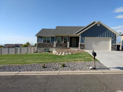 Elk Ridge Single Family Home For Sale: 74 W Park Dr Dr