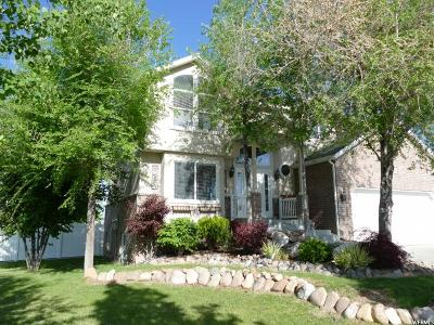 Syracuse Single Family Home For Sale: 2584 S 1475 W