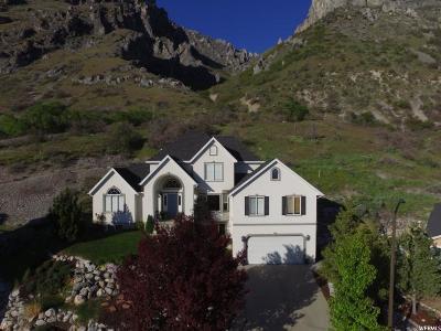 Springville Single Family Home For Sale: 840 E 1125 N